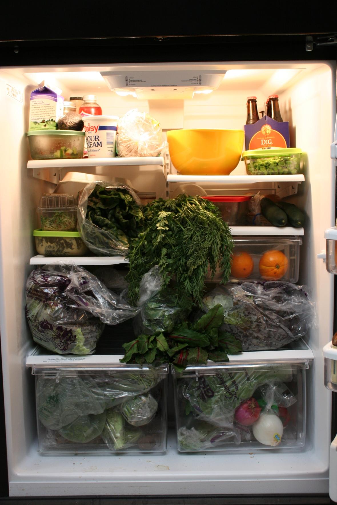 A vegetarian's refrigerator