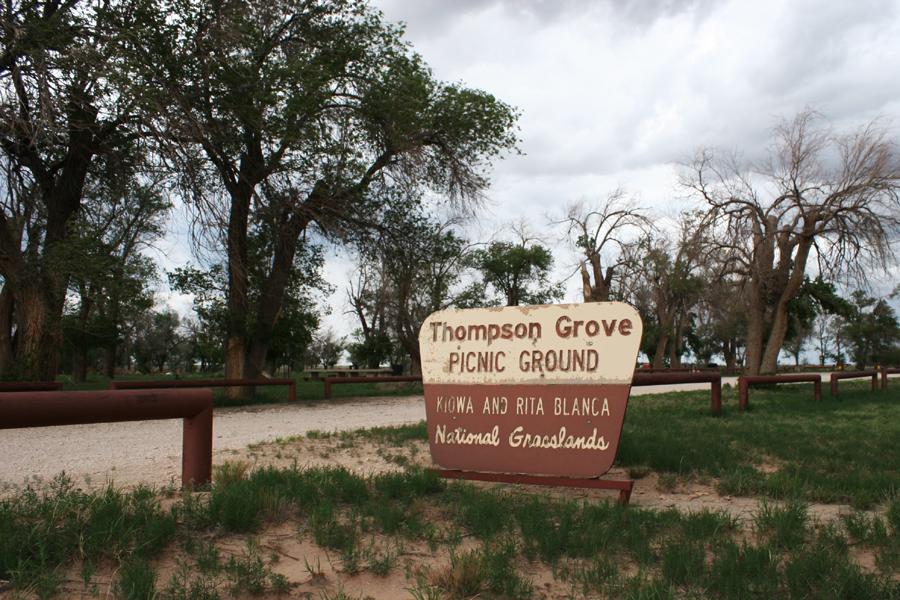 Thompson Grove Picnic Area