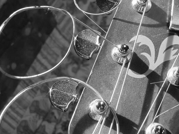 dusty strings bw