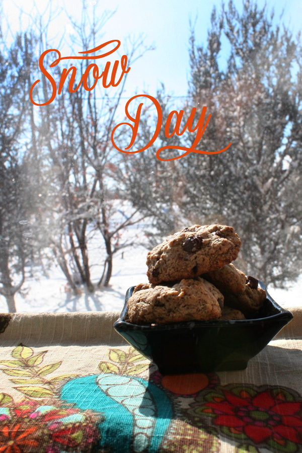 snow_day_cookies