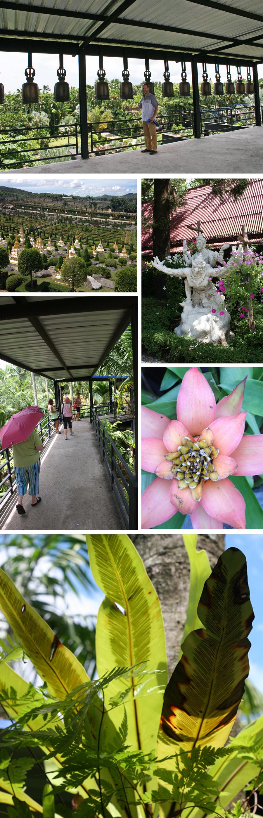 Nong Nooch Flowers 3
