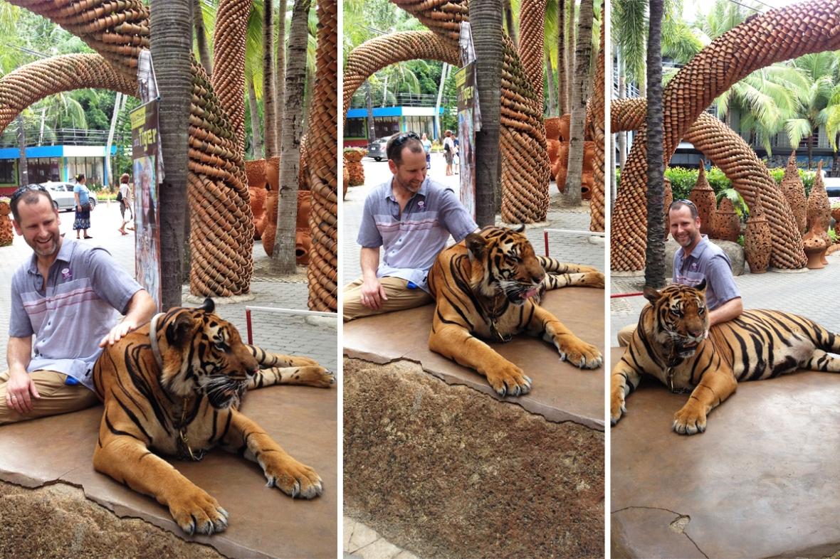 tiger_Nong Nooch