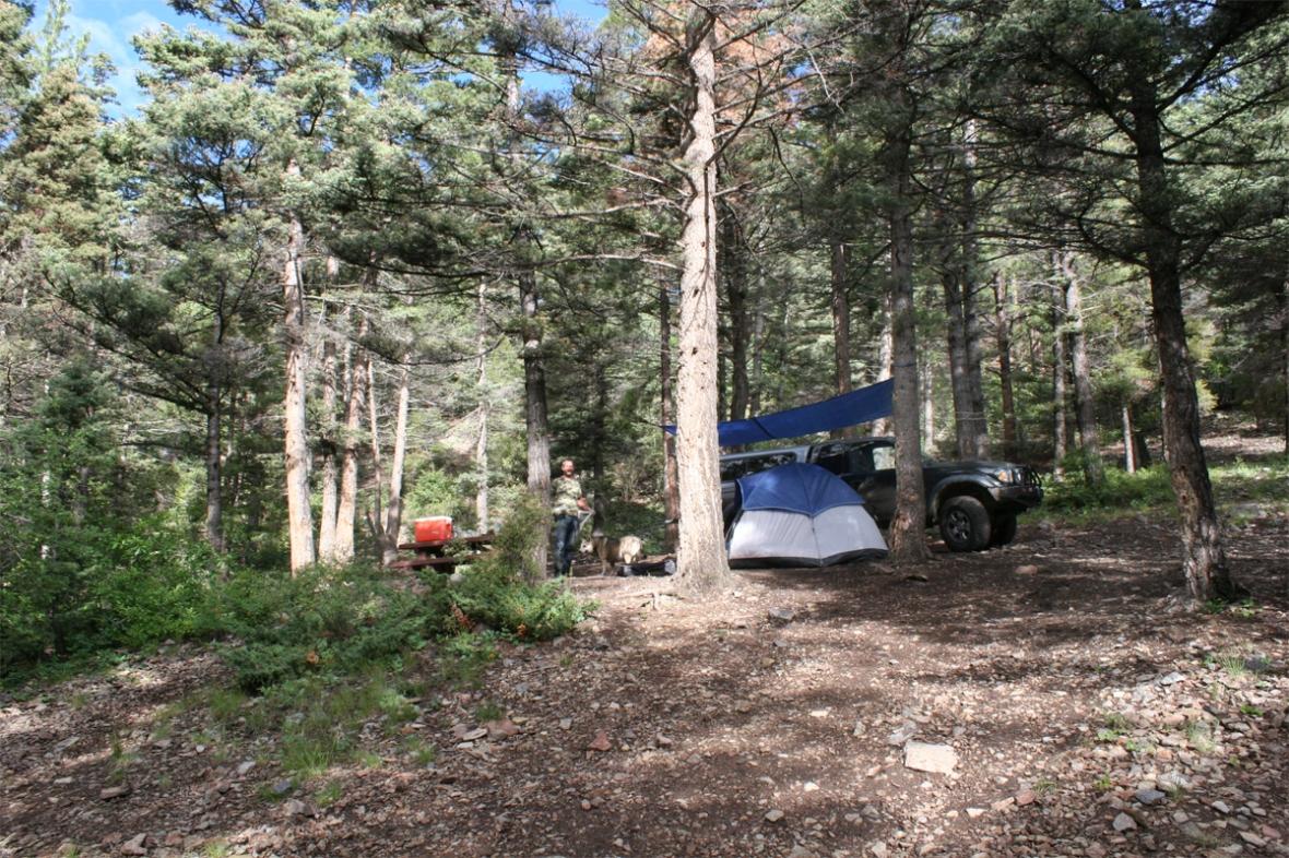 campsite_morning