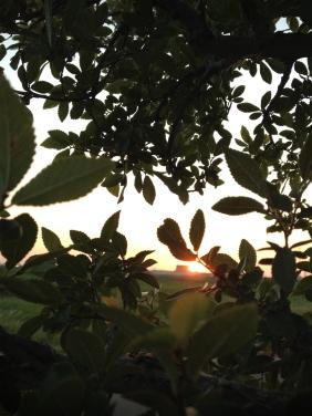 peek-a-boo sunset