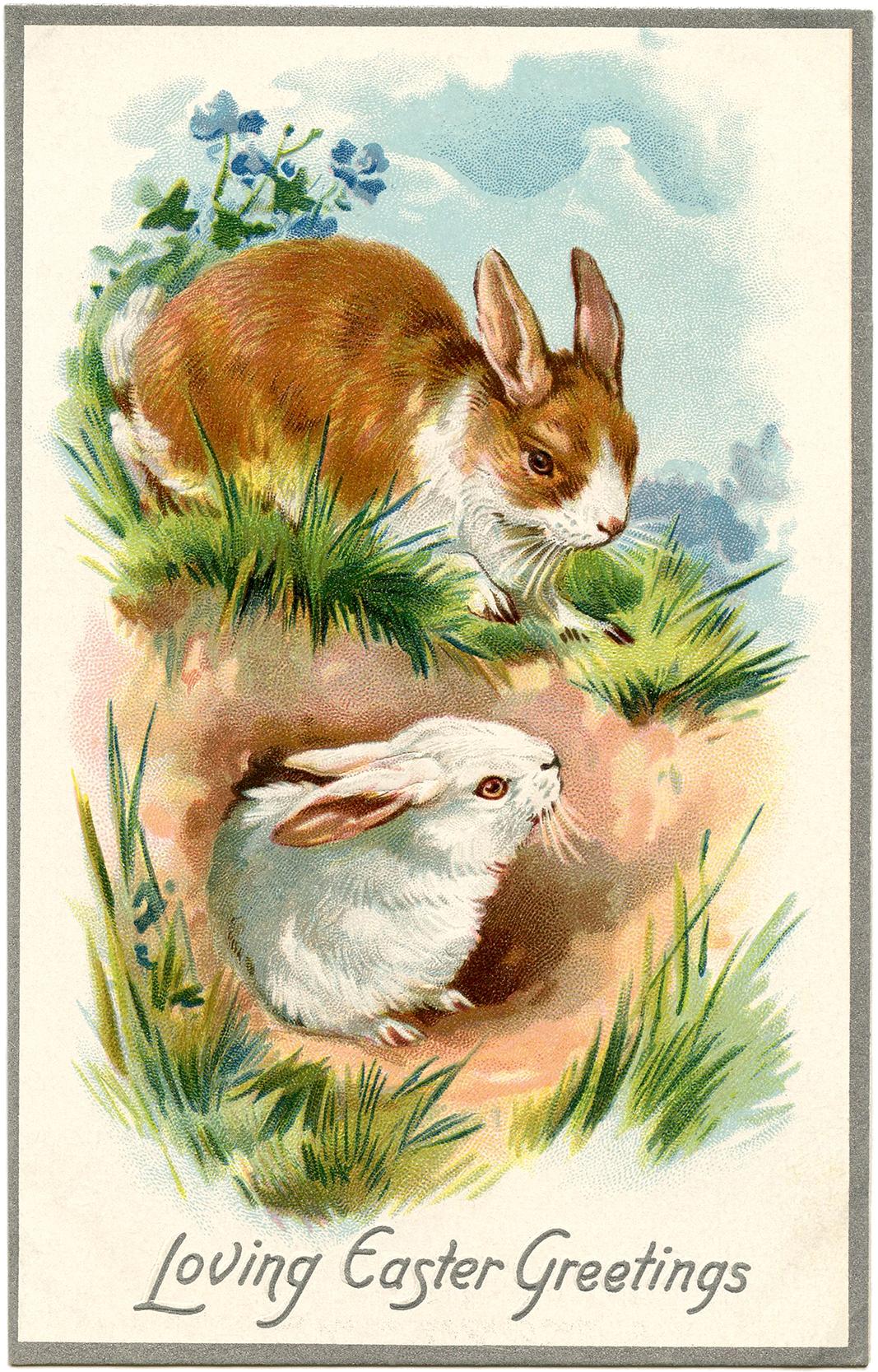 Vintage-Easter-Bunnies-Card-GraphicsFairy