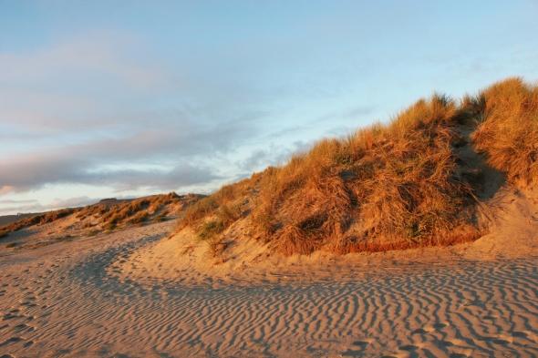 Morro Bay Sand Dunes