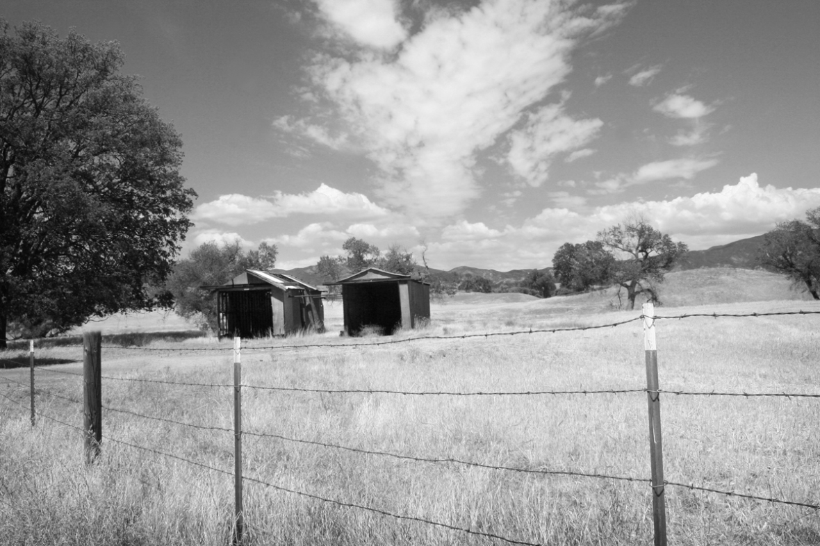 bakersfield_photography_barns