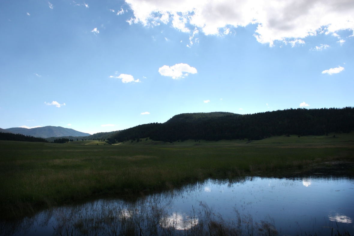 valles caldera New Mexico 3