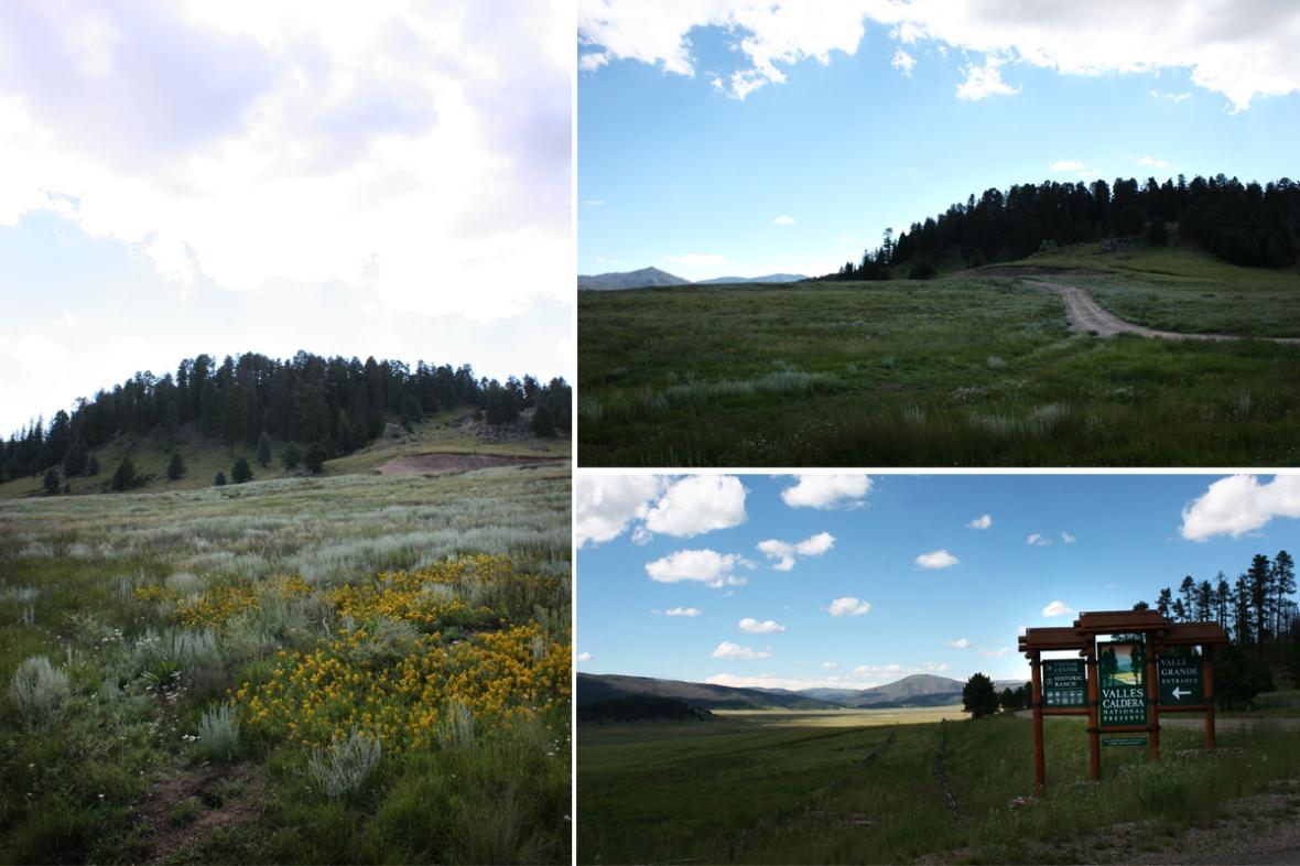 Valles Caldera New Mexico