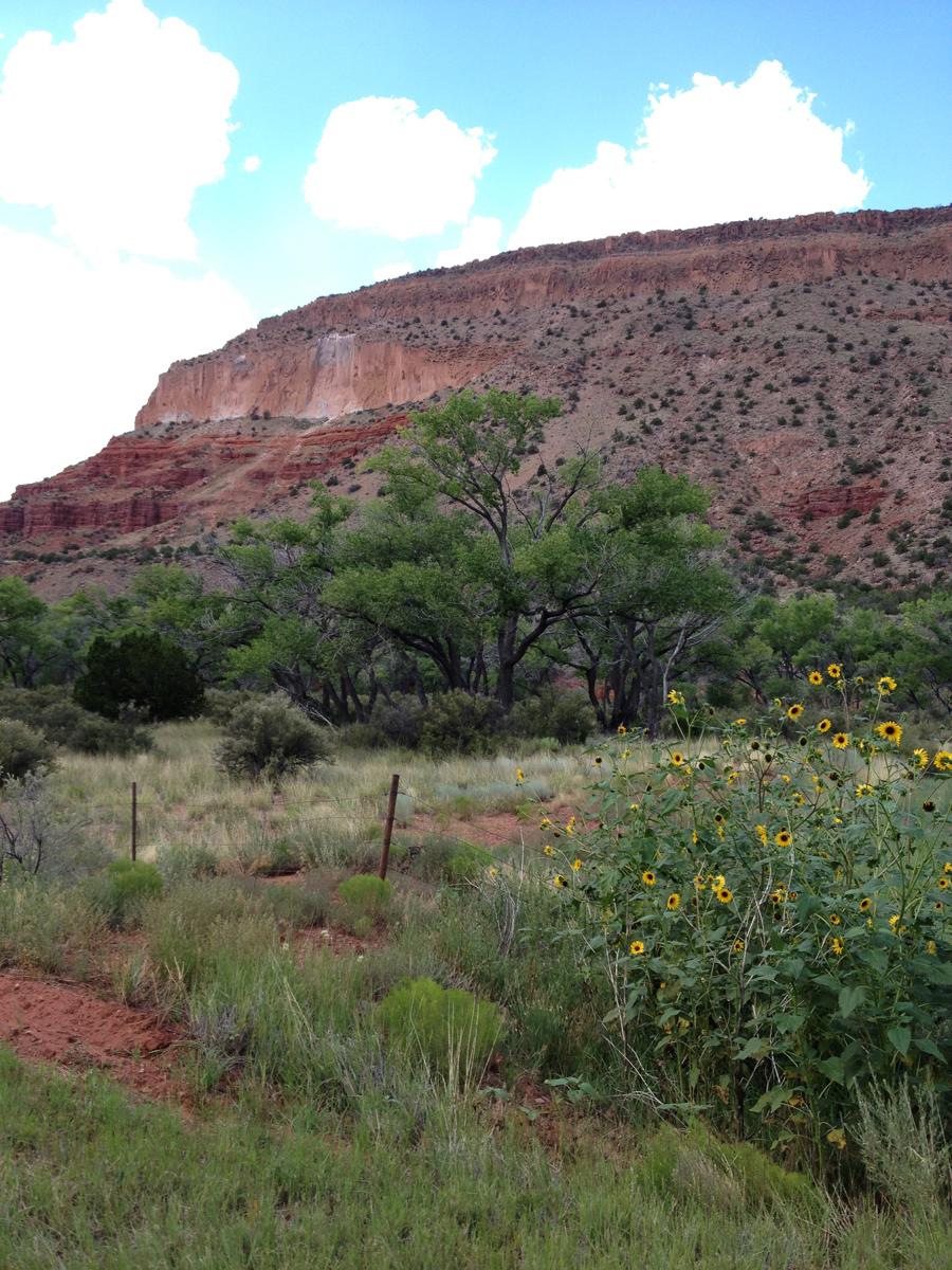 Jemez Albuquerque NM