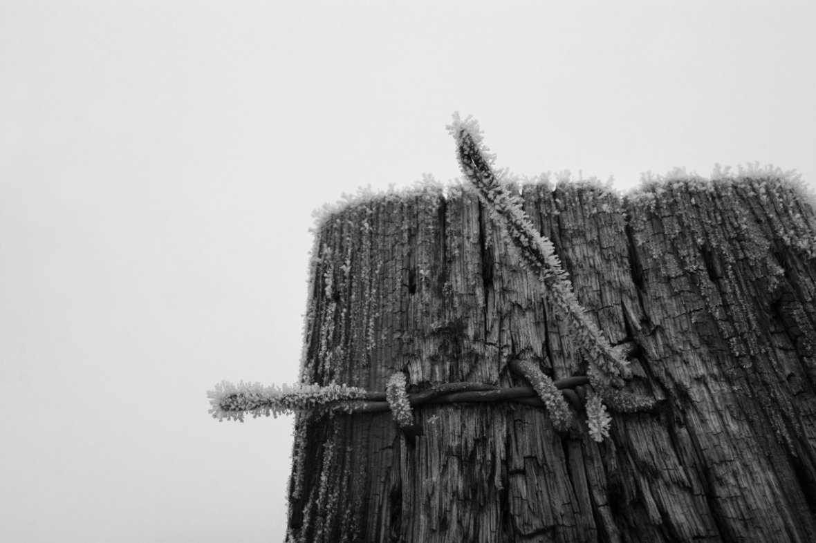 black and white photography fencepost