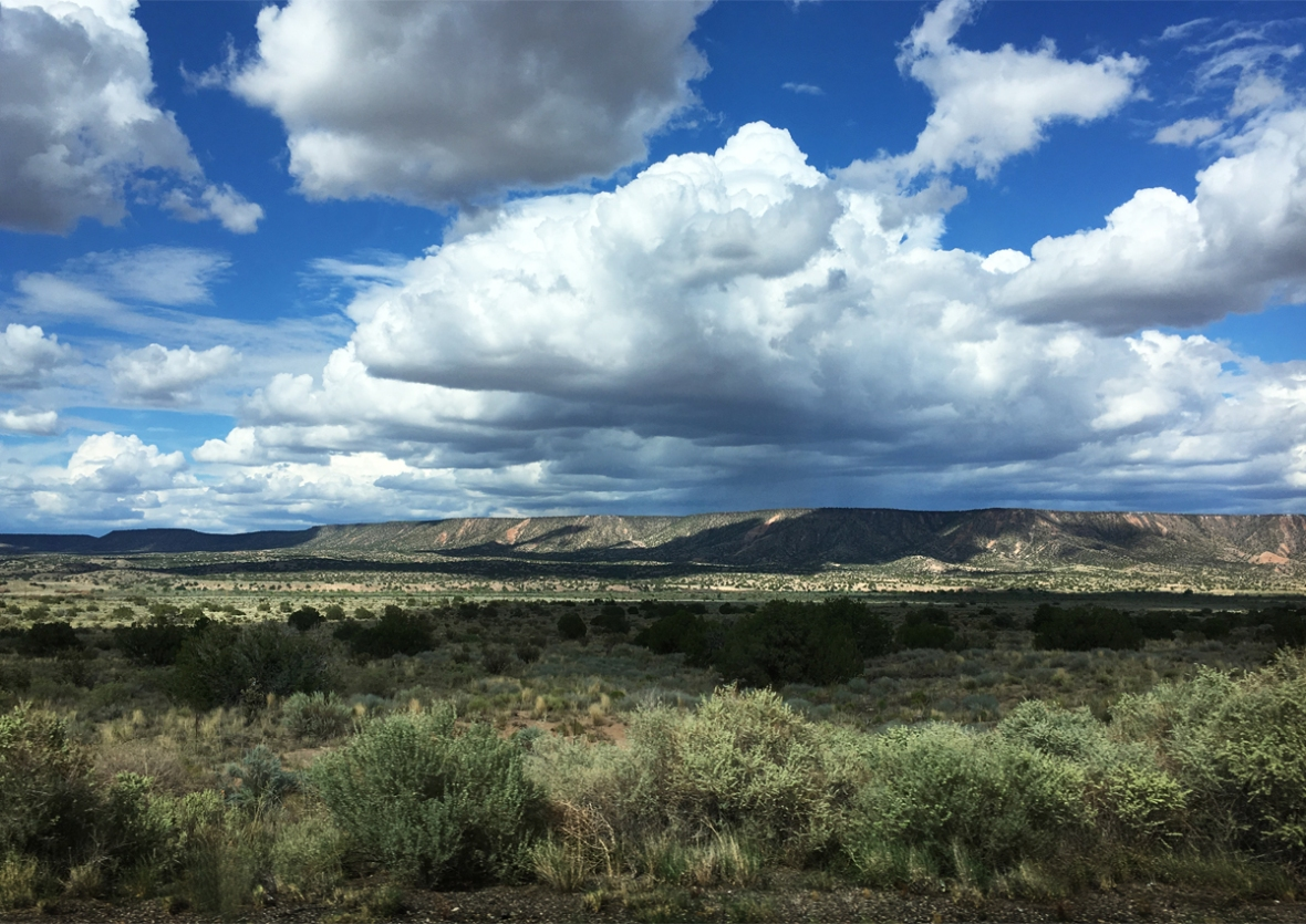 NM_landscape