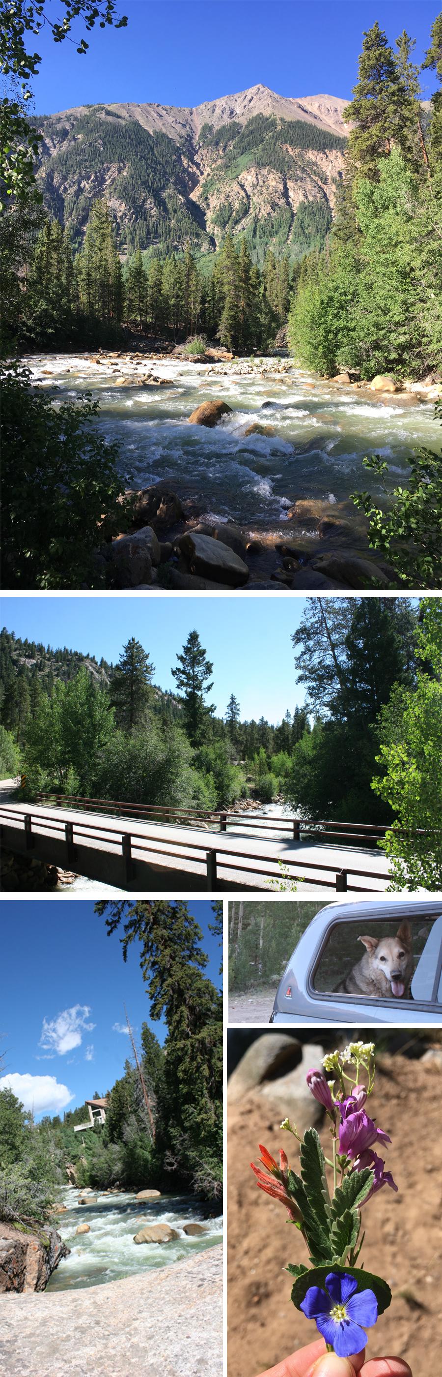 parry-peak-campground-colorado-collage