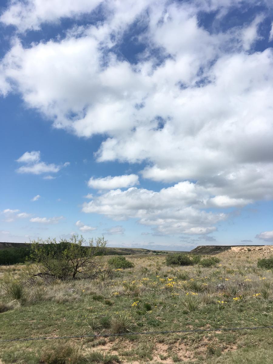 high plains landscape