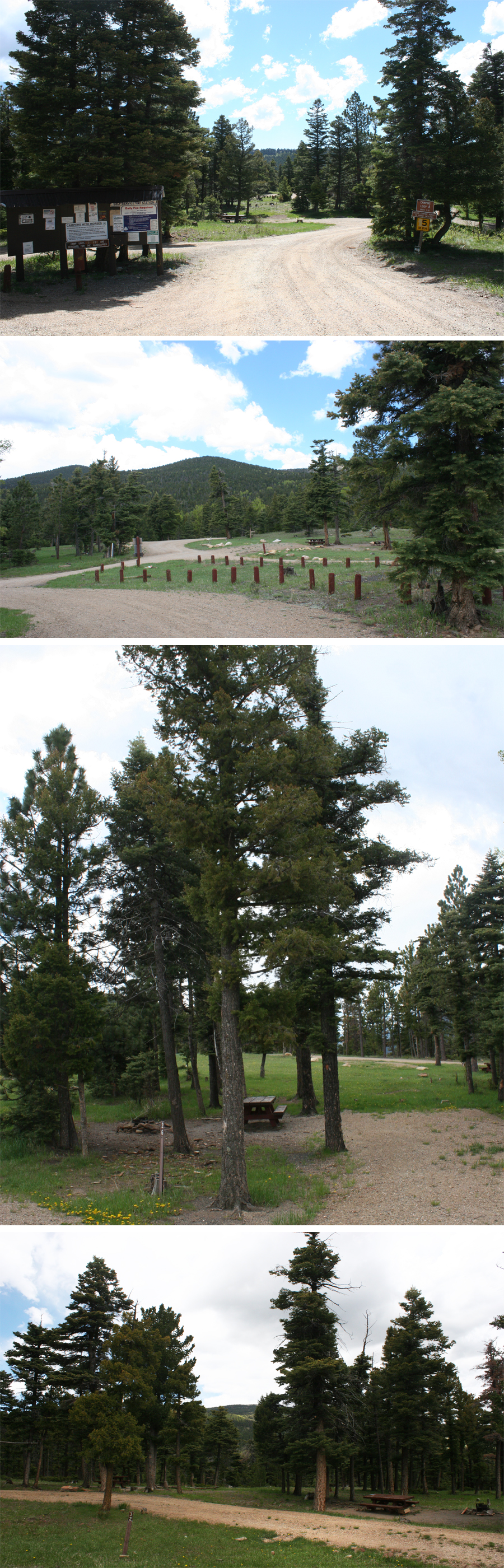 Cimarron Campground New Mexico sites