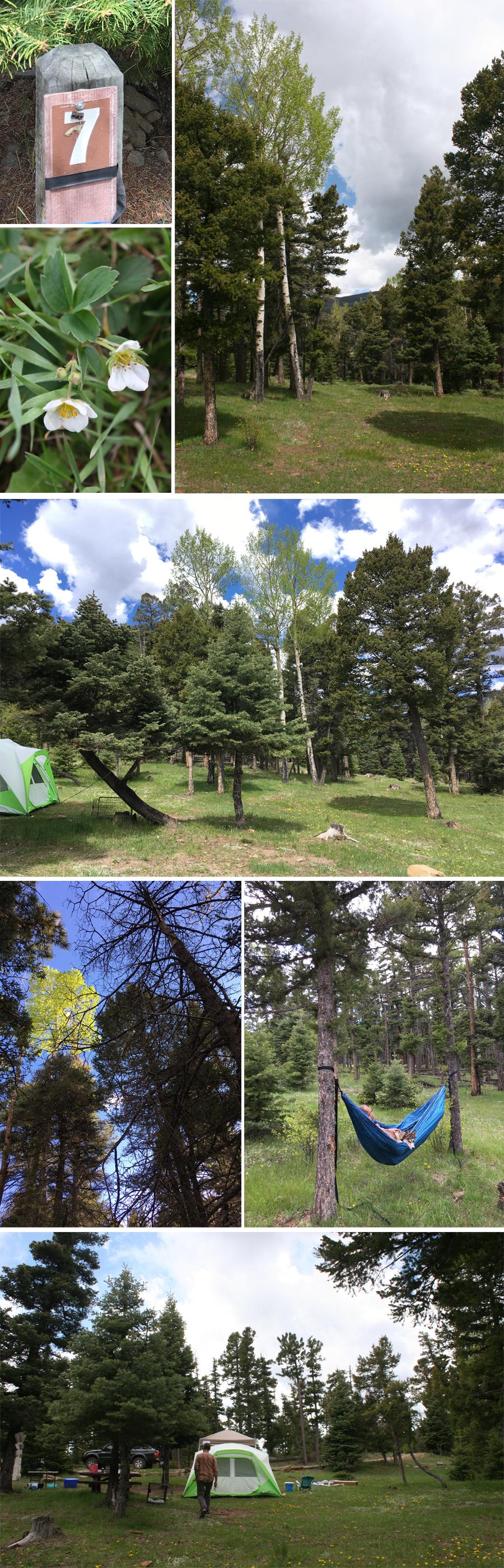 Cimarron campground site7