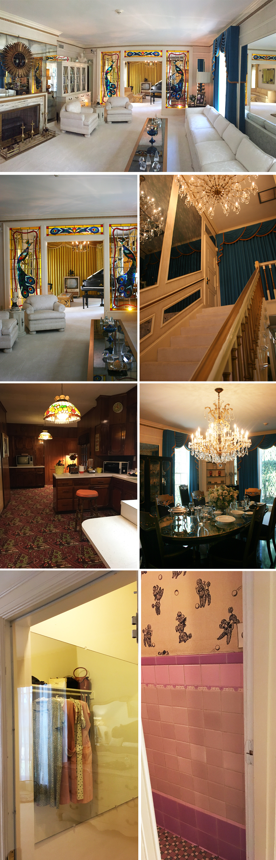 Inside Graceland 1